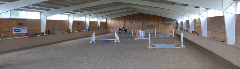 raymi at back of Halton Place riding arena